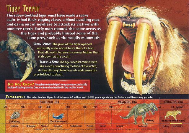 File:Saber-Toothed Tiger back.jpg