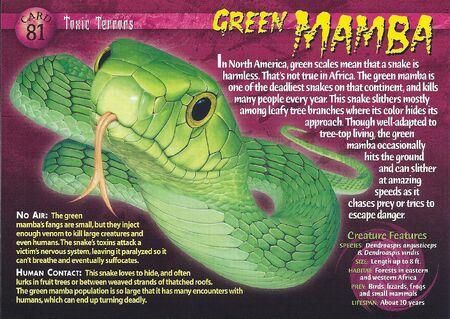Green Mamba front