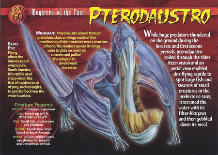 Pterodaustro front