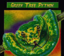 Green Tree Python TCG