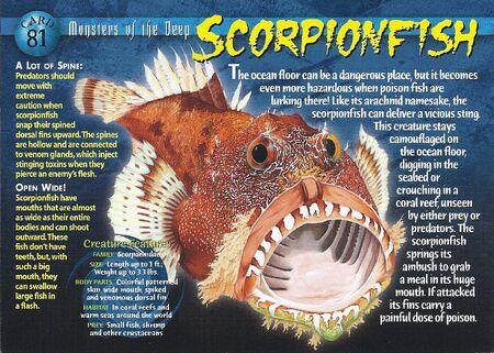 Scorpionfish front