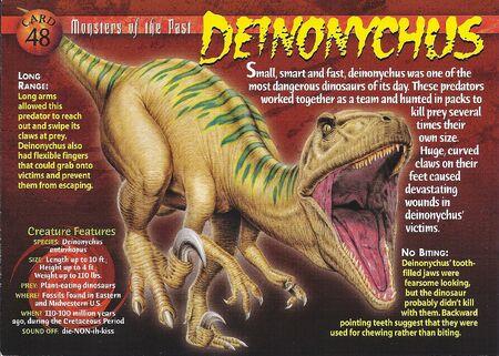 Deinoychus front