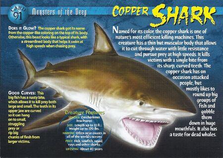 Copper Shark Weird N Wild Creatures Wiki Fandom