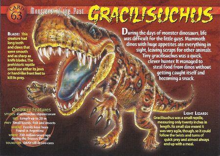 Gracilisuchus front