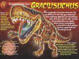 Gracilisuchus
