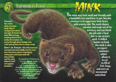 Mink front