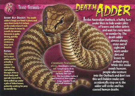 Death Adder front