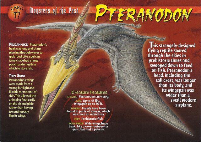 File:Pteranodon front.jpg