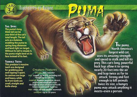 puma weird n wild creatures wiki fandom powered by wikia
