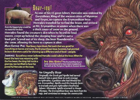 Erymanthian Boar back