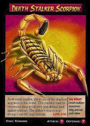 Death Stalker Scorpion