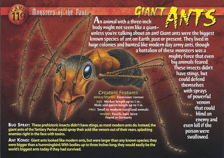 Giant Ants front