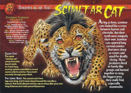 Scimtar Cat front