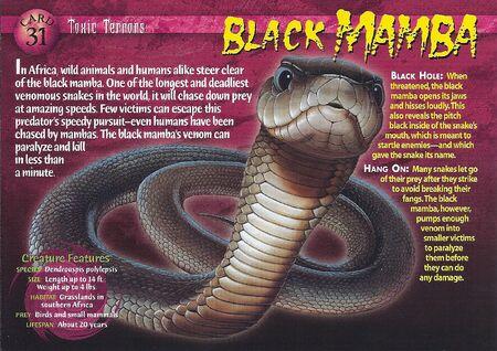 Black Mamba front