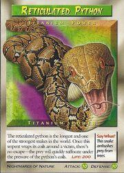 Reticulated Python-titanium