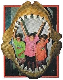 Megalodon Back Image