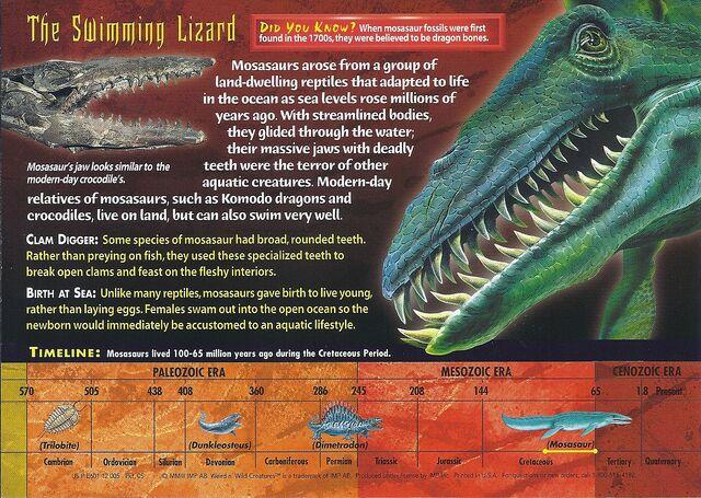 File:Mosasaurs back.jpg