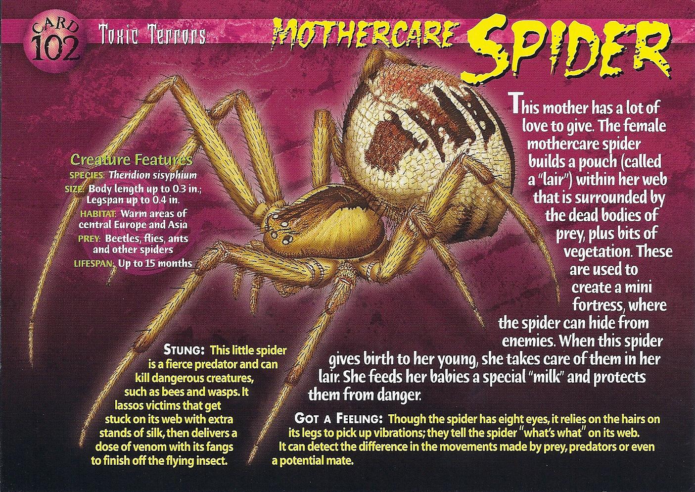 Mothercare Spider Weird N Wild Creatures Wiki Fandom