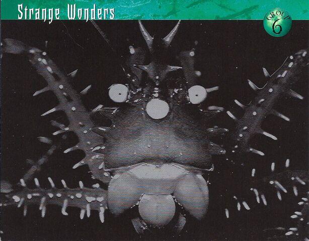 File:Strange Wonders 0.jpg