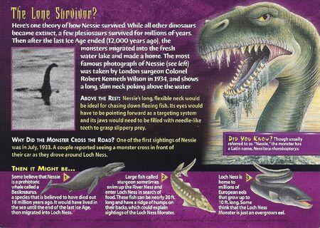 Loch Ness Monster back