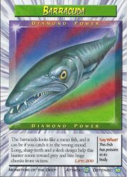 Barracuda Diamond