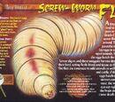 Screw-Worm Fly