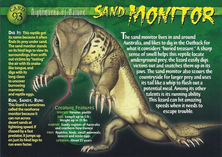Sand Monitor front