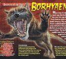 Borhyaena
