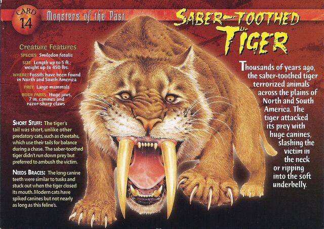 File:Saber-Toothed Tiger front.jpg