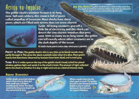 Goblin Shark back