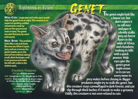 Genet front