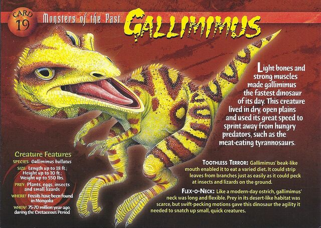 File:Gallimimus front.jpg