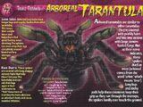 Arboreal Tarantula