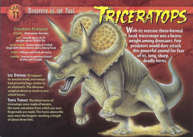 File:Triceratops front.jpg