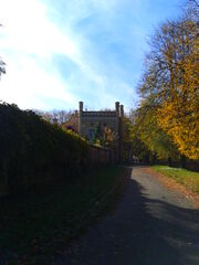 Dzików - Mur arboretum i Kuchnia