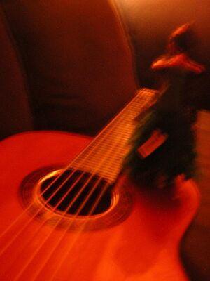 Flamenco04