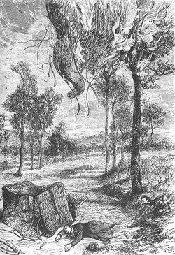 'A Drama in the Air' by Émile Bayard 5