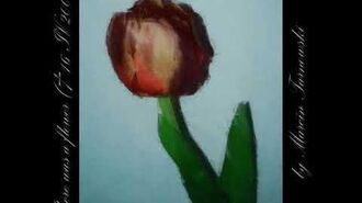 There was a flower (+ 16 IV 2006)