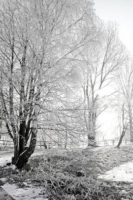 FrostyMorningInSwinoujscie