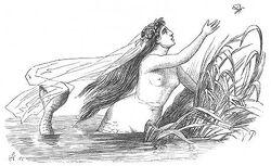 Vilhelm Pedersen-Little mermaid
