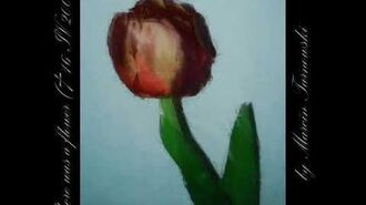 There was a flower ( 16 IV 2006)