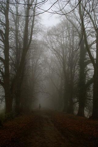 Ghost rider in the mist