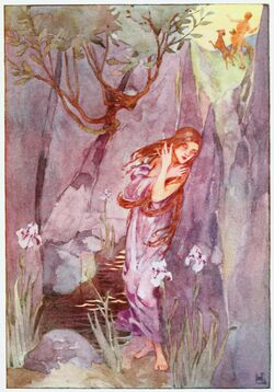 Echo and Narcissus, A Book of Myths