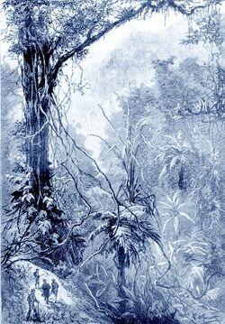 'Propeller Island' by Léon Benett 26