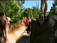AustraliaZoo-BehindtheScenes3