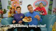 AnthonyHasOverEaten!-WigglyTrivia