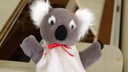 KoalaLullaby27
