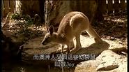 DannyVisitsAustralia3
