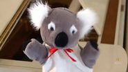 KoalaLullaby33