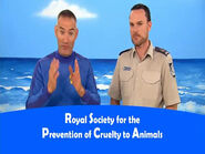 RoyalSocietyforthePreventionofCrueltytoAnimals